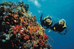 Plongée sous-marine, se vider l'esprit avant le mariage